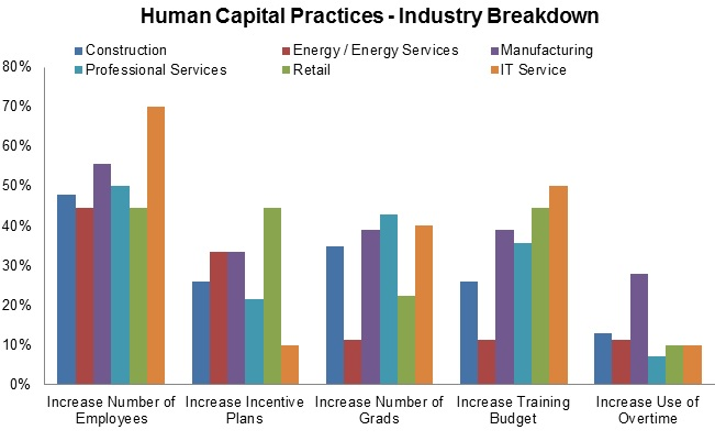 Human Capital Practices Industry Breakdown